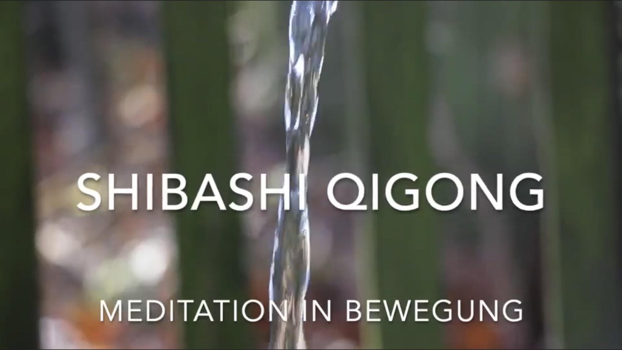 Kurzfilm zum Lehrgang Shibashi Qi Gong